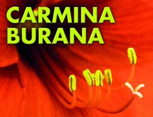 Carmina Burana copy
